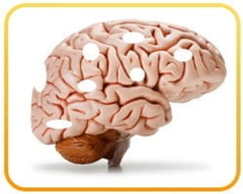 The #1 WORST Food that HARMS Your Brain (avoid!)