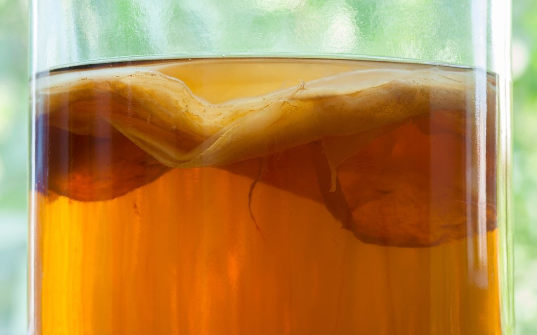 Kombucha: Benefits Including Gut Health, Immunity, Cancer-Fighter, and even helps with Weight Loss?
